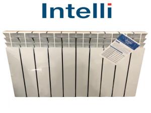 Радиатор Биметаллический INTELLI 100х500